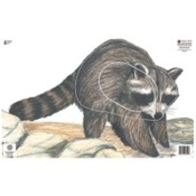 "MAPLE PRESS INC. NFAA GROUP 3 RACCOON TARGET FACE 14.25""X22.5"""