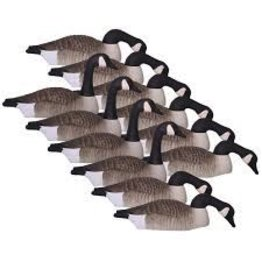 HARD CORE HARD CORE CANADA GOOSE SHELLS ECONOMY SERIES TOUCH DOWN 12PK