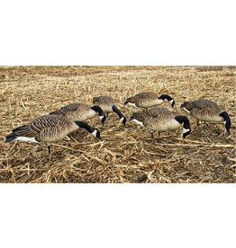 AVIAN-X AVIAN-X HONKER FEEDERS GOOSE DECOYS