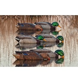 AVIAN-X AVIAN-X TOPFLIGHT BACK WATER MALLARD