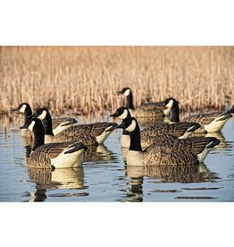 AVIAN-X AVIAN-X TOP FLIGHT HONKER FLOATERS