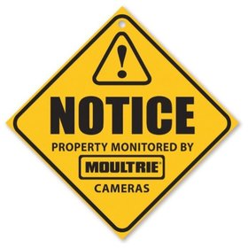 MOULTRIE MOULTRIE CAMERA SURVEILLANCE SIGNS 3-PK