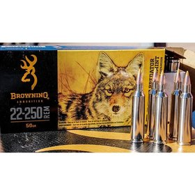 BROWNING BROWNING BXV 22-250 REM  50 GR 20 RDS