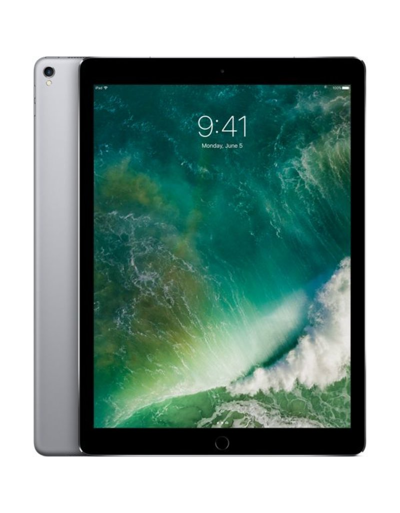 Apple 12.9-inch iPad Pro Wi-Fi + Cellular 256GB - Space Gray