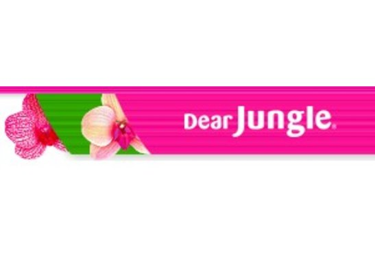 DEAR JUNGLE