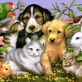 Puzzle Loveable pets