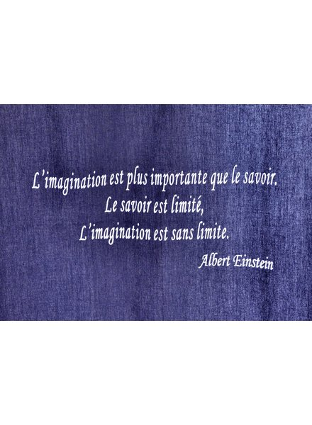 QUOTE CANVAS EINSTEIN # 30