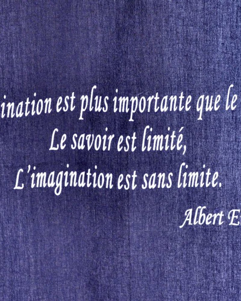 TOILE CITATION EINSTEIN  # 30