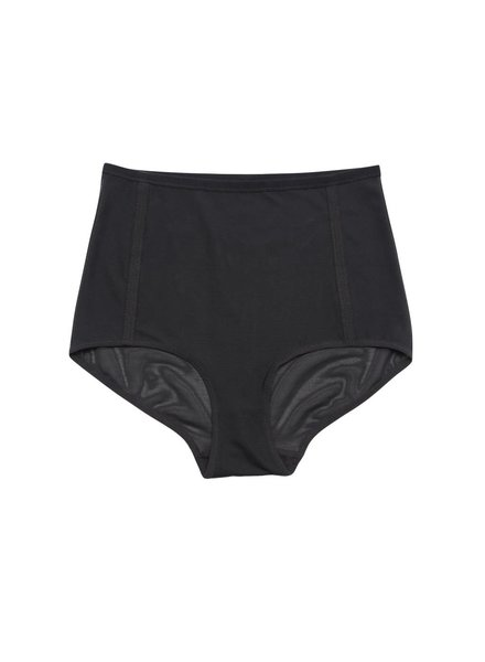 Land of Women Mesh High Waist Brief
