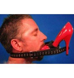 Shoe Gag