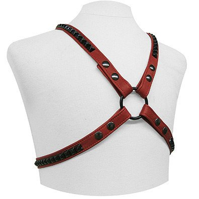 Black Hardware Leather Harness