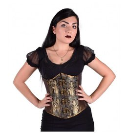 Gentle Steampunk Cincher