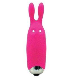 Bunny Mini Vibe