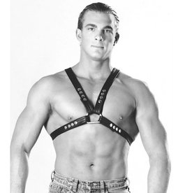 Traditional Buckle X-Harness