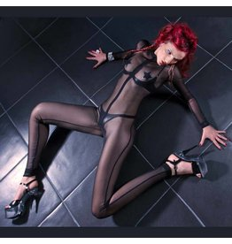Sweety Mesh Catsuit
