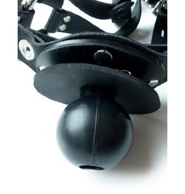 Trainer Ball Gag W/Ring