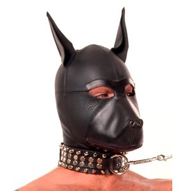 Leather Puppy Hood