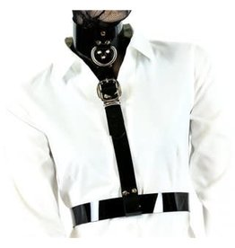 Collar Harness w/ Buckle