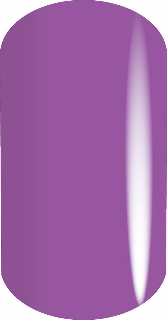 Akzentz Majestic Violet