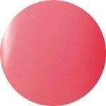 Nail Labo Presto Color Gel #147<br />Delizioso