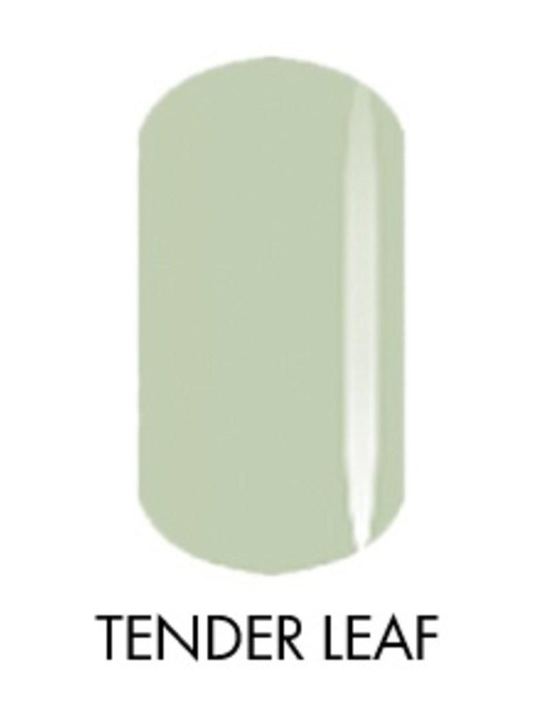Akzentz Tender Leaf