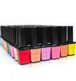 Nail Labo Presto Color Gel Standard Set [Polish] - All 148 Standard Colors