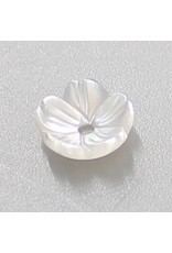 Shreydva Shell Blossom White 2P
