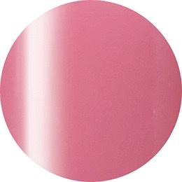Nail Labo Presto Color Gel #249