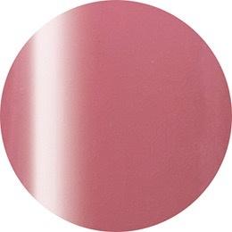 Nail Labo Presto Color Gel #254