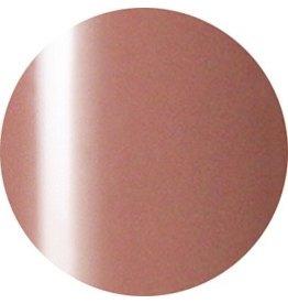 Nail Labo Presto Color Gel JC-21