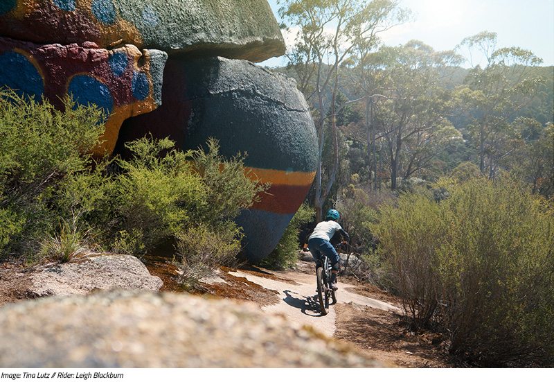 Sovereign Cycle Ride Diary: Forever Dreaming of Derby. An adventure blog about mountain biking in Tasmania.