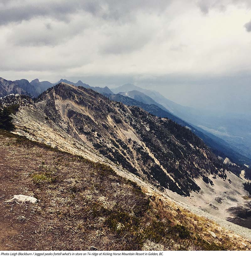 Jagged peaks on T4 Ridge in Golden, BC. Image by Leigh Blackburn from the Sovereign Cycle blog post: Is Now the Golden Age of Mountain Biking?
