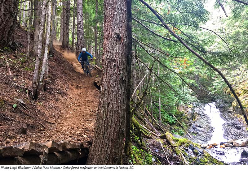 Russ Morton rides through cedar forest perfection on Wet Dream in Nelson, BC. Image by Leigh Blackburn from the Sovereign Cycle blog post: Is Now the Golden Age of Mountain Biking?