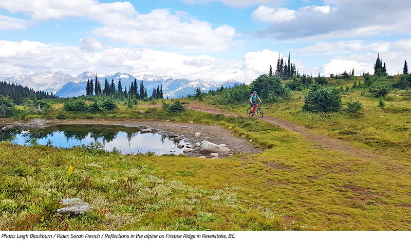 Sarah French on Frisby Ridge in Revelstoke BC. Image by Leigh Blackburn from the Sovereign Cycle blog post: Is Now the Golden Age of Mountain Biking?