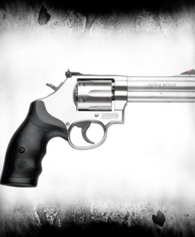 """Smith & Wesson S&W M686 .357 Mag 4.2"""" Stainless 6-shot, """"Cdn Special"""""""