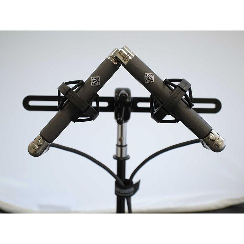 Telefunken Telefunken ELA M 260 Field Tube Microphone Set