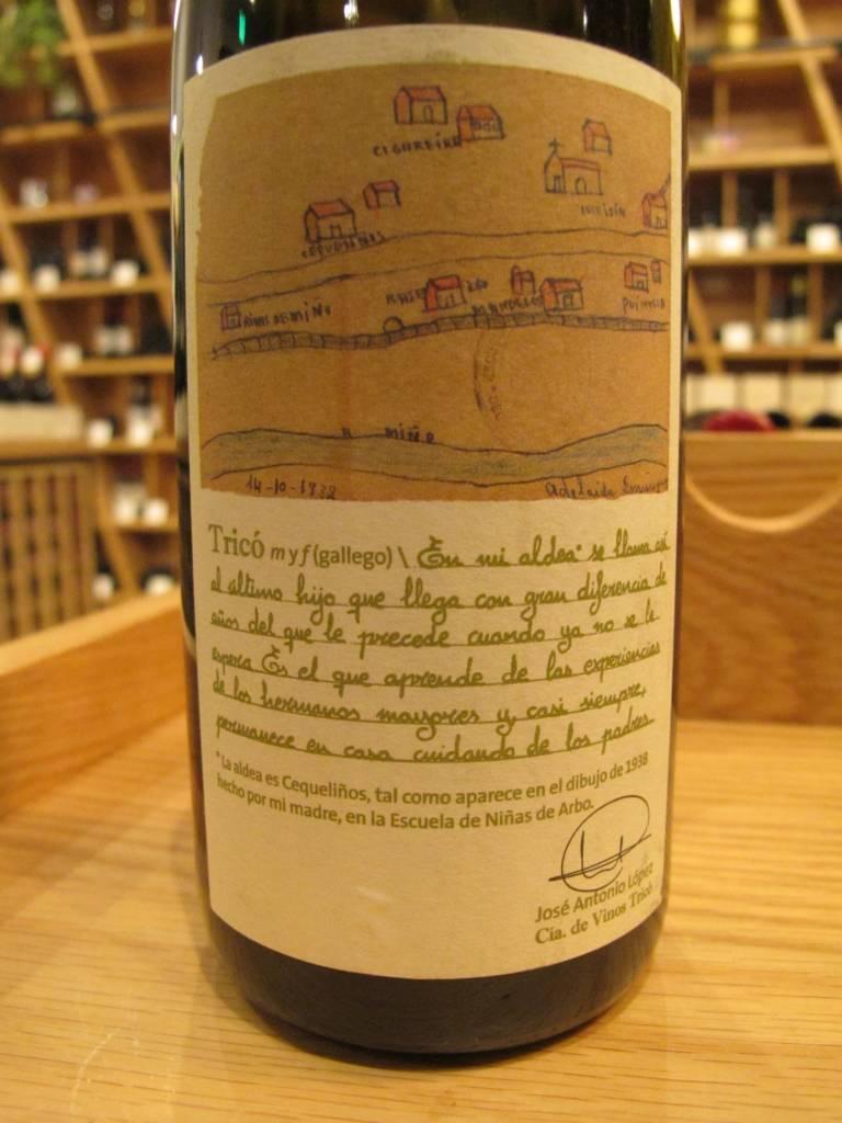 Compañia de Vinos Tricó 2011 Compañia de Vinos Tricó Albariño 750mL