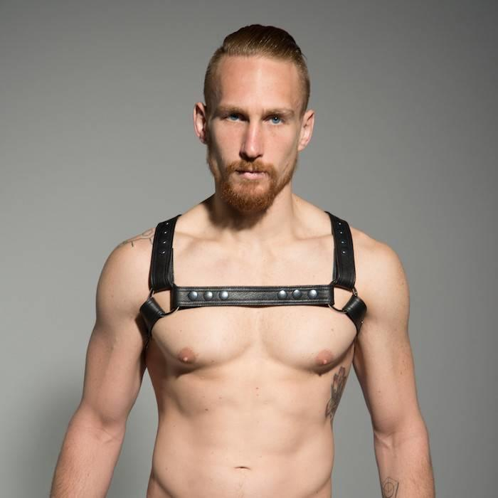 Half Holster Harness
