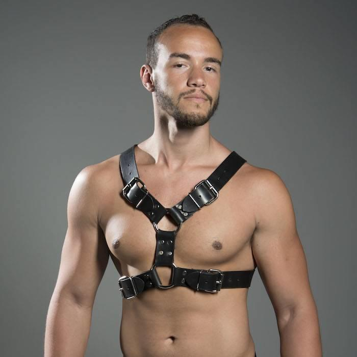 Harness, Double Buckle Latigo