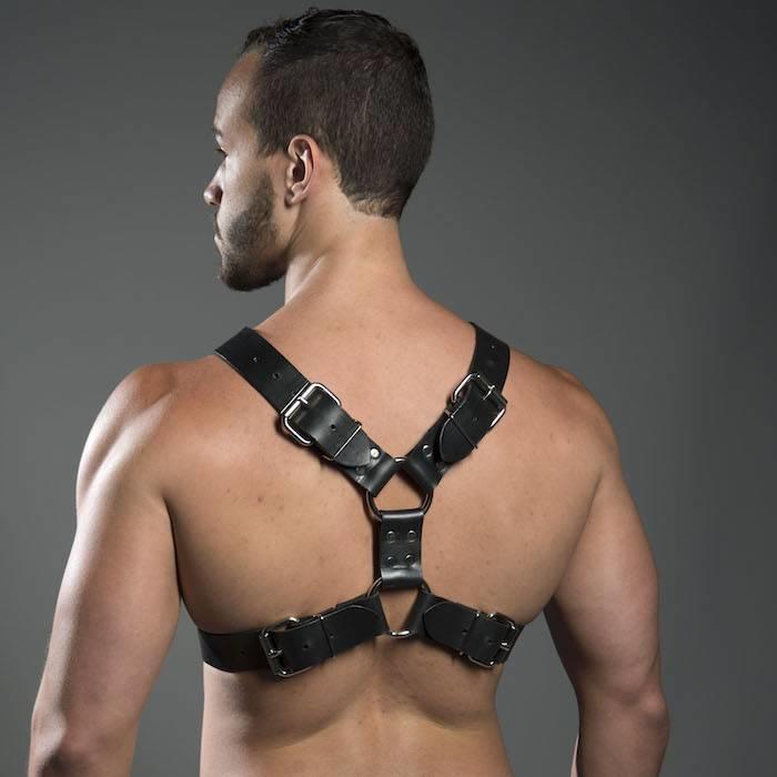 Harness, Double Buckle Latigo