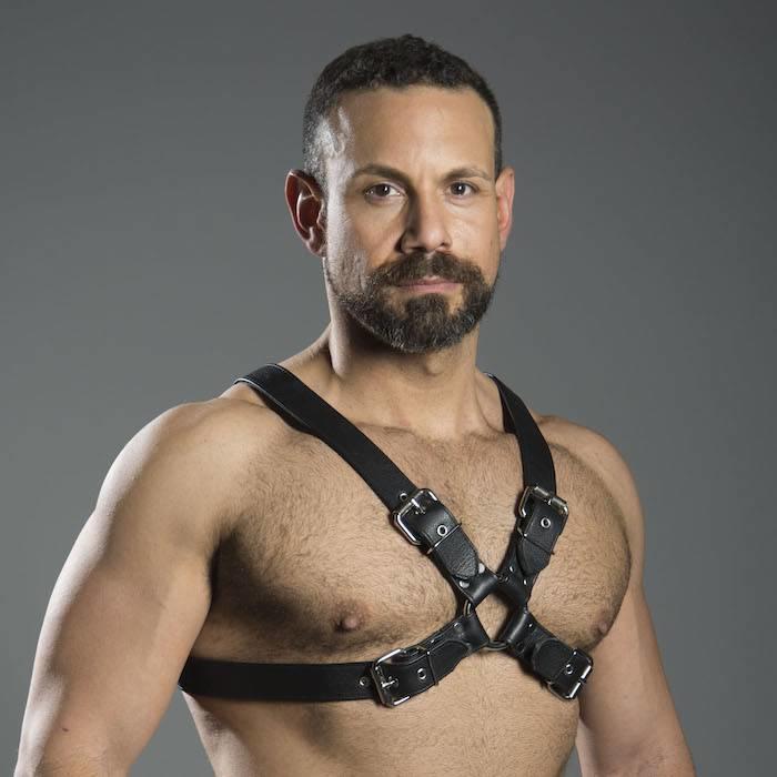 Buckle Half Harness