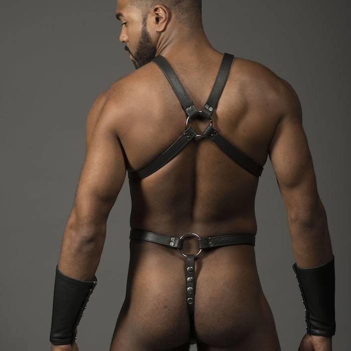 Harness, Full, O-Ring,