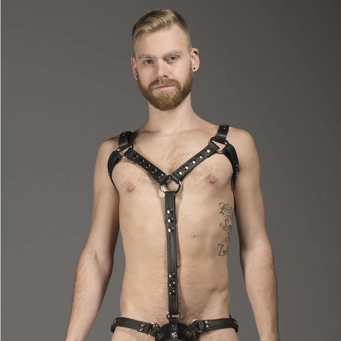 Harness, Full, Texas