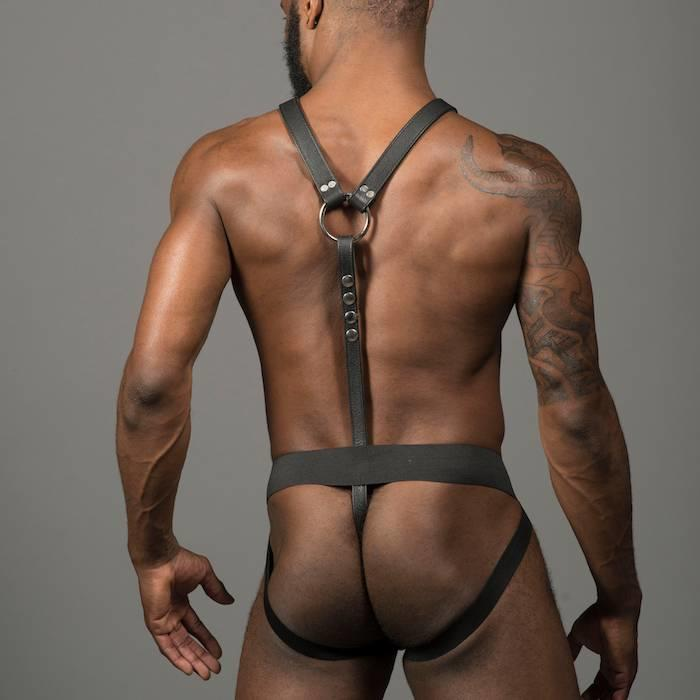 Full Y Harness