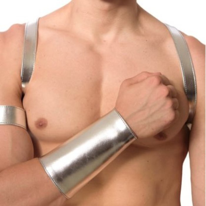 Silver Leather Shoulder Harness