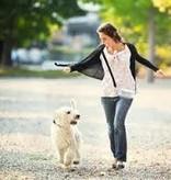 Tina Labadini Designs Doggy Ditty