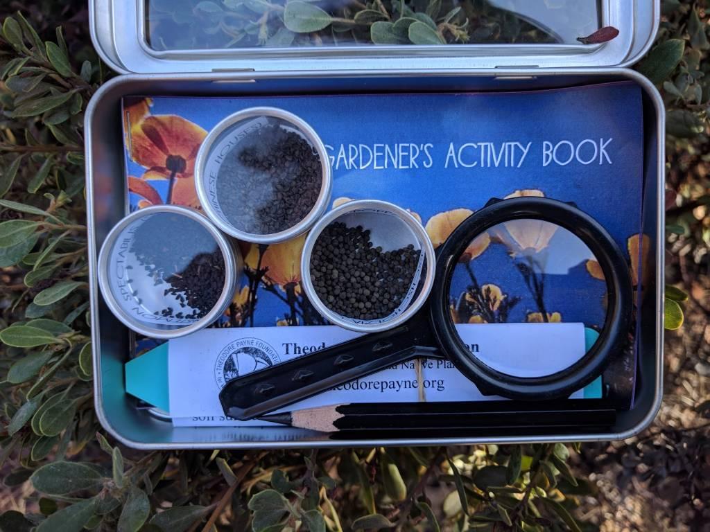 Junior Gardener's Seed Collection