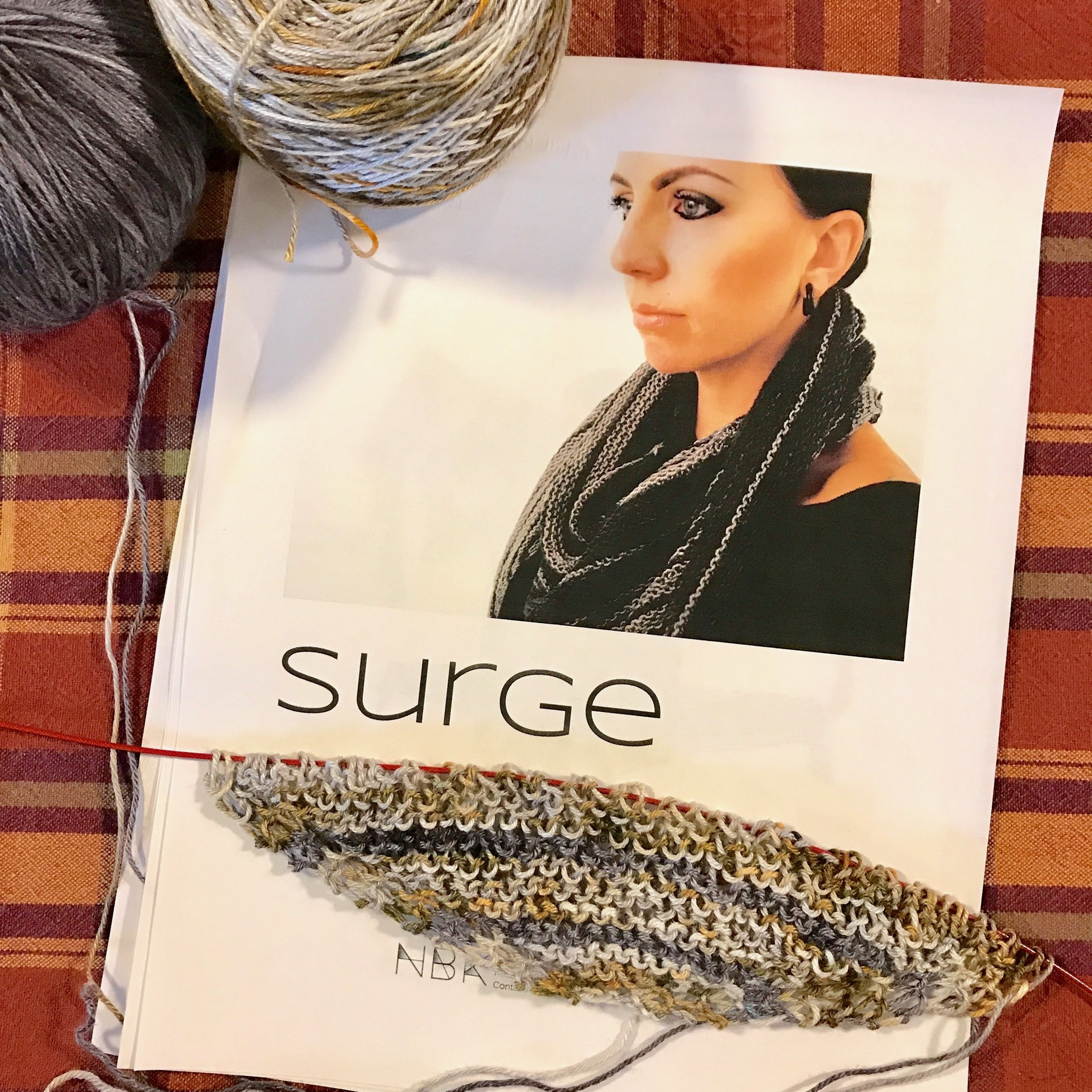 Sue2Knits Surge WIP