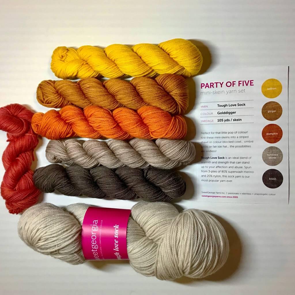 SweetGeorgia Yarns On The Spice Market Shawl Kit