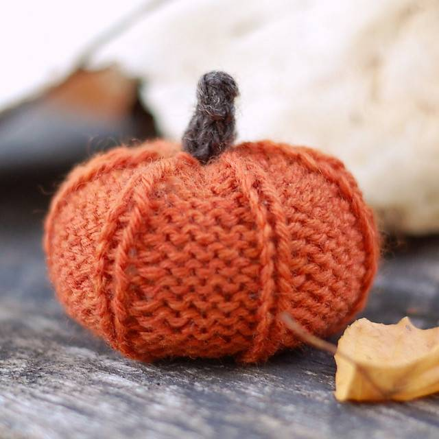 Thanksgiving Pumpkin Kit